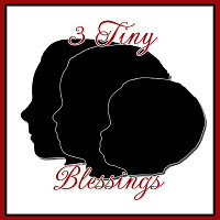 3 Tiny Blessings Logo