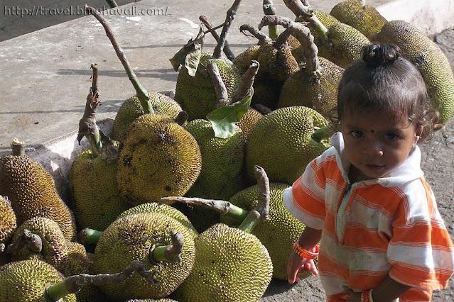 Jackfruit hawker's family in Yercaud