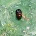 भाई की मौत के बाद हैदराबाद का युवक लोगों का जीवन बचा रहा, 107 को दी नई जिंदगी