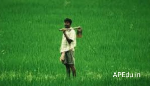 Good news for farmers.The central government is putting money in the farmers' account