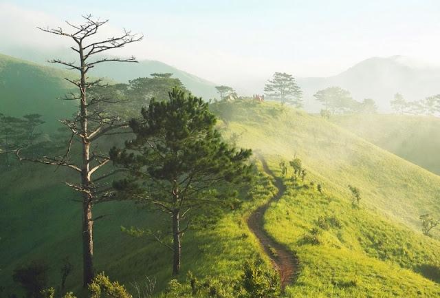 For your feet only: Vietnam's most splendid trekking route 5