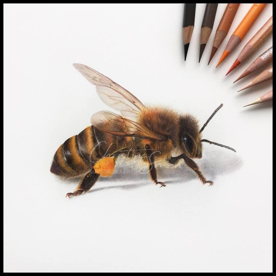 07-Honey-Bee-Cristina-Simon-www-designstack-co