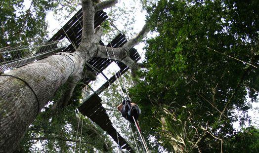www.viajesyturismo.com.co524x310