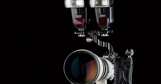 Gimbal Heads for Telephoto Lenses wildlife photography