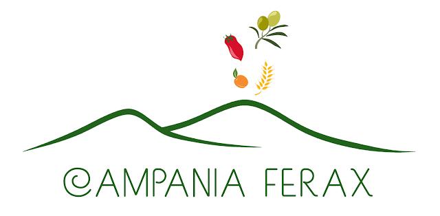 http://www.campaniaferax.it/