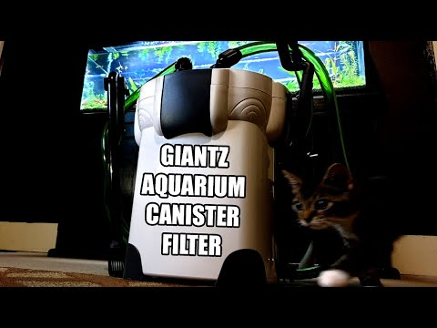 Canister Filter is Best for an Oscar Aquarium