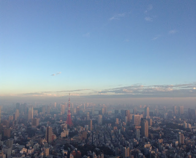 view from Mori Tower