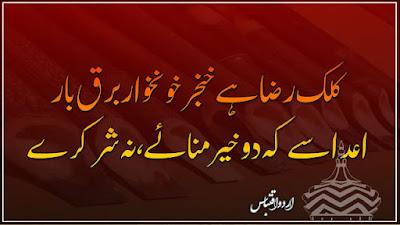 کلک رضا ہے خنجر خونخوار برق بار