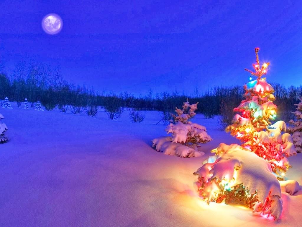 TATOOS ARMY: 3d Christmas Tree For Desktop HD Wallpaper Free