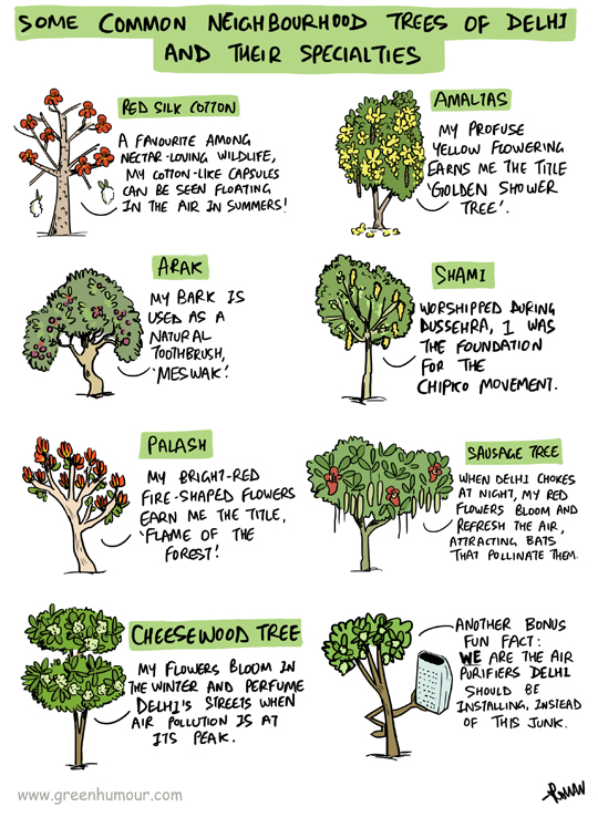 Green Humour: Neighbourhood Trees of Delhi