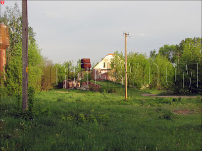 Туча. Руины винокурни Еленских