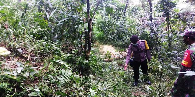 Jatuh Dari Pohon Nangka, Warga Karangjambu Tewas