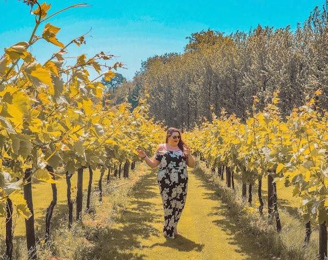 Plus size travel blogger The Owlet walking through a vineyard