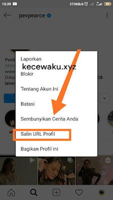 Cara Melihat Foto Profil IG