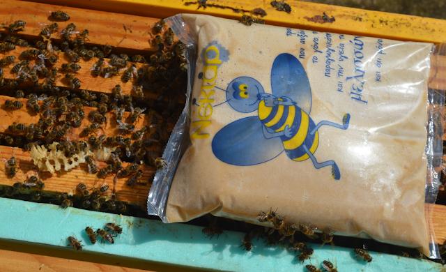 Μελισσοτροφή Q extra power της BeeNectar: Μια φοβερή τροφή που θεραπεύει  βαρρόα, νοζεμίαση και ασκοσφαίρωση...