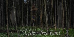 https://miedzy-drzewami.blogspot.com/