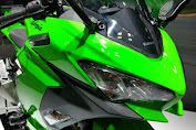 Kawasaki Ninja 250 2018 Officially Glide