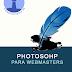 (VideoTutoriales.es) Photoshop Para Webmasters