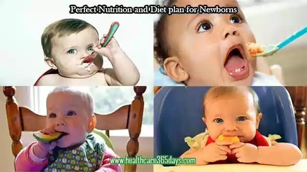 How to feed to newborn baby with right meals | 0-12 months baby foods.