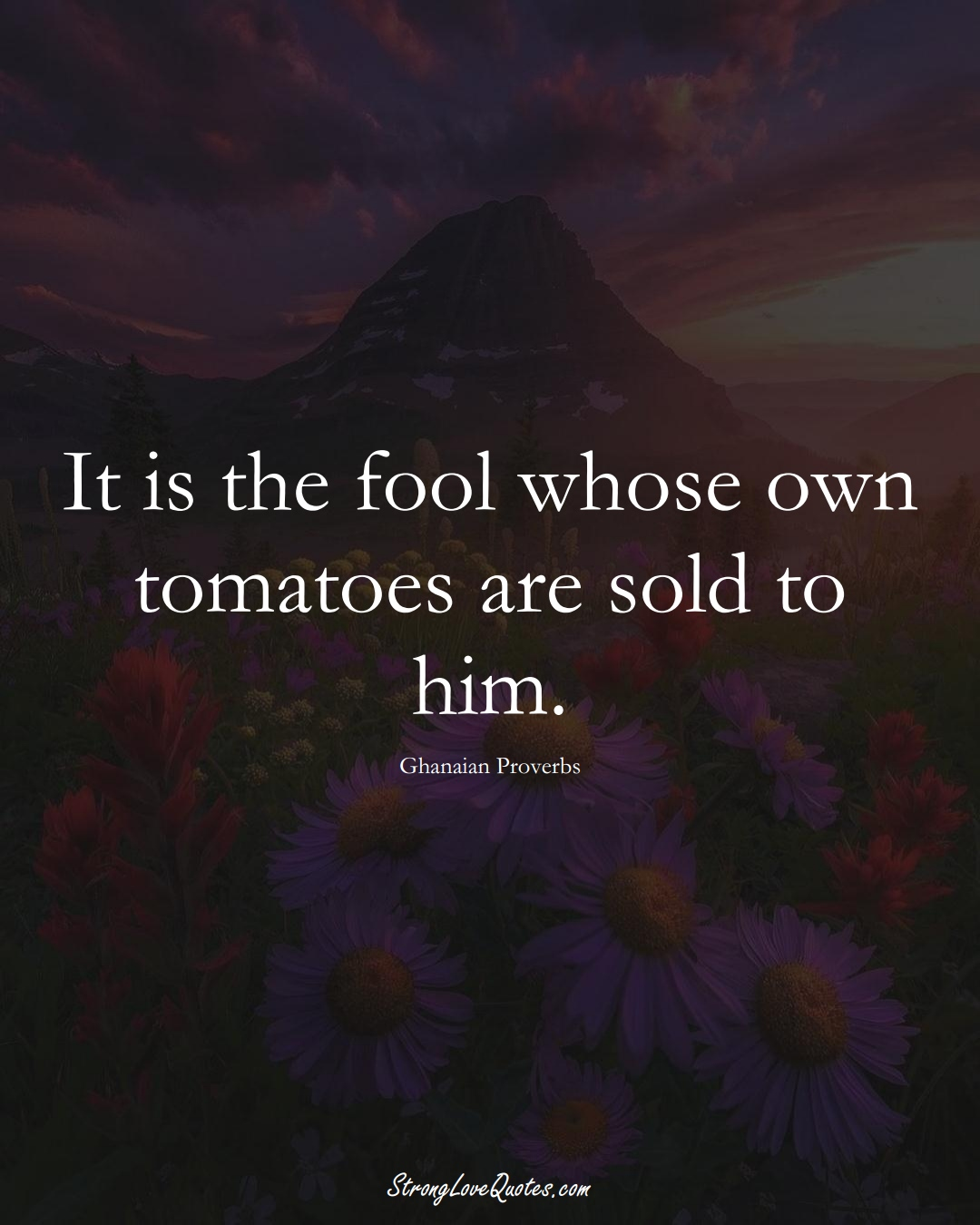 It is the fool whose own tomatoes are sold to him. (Ghanaian Sayings);  #AfricanSayings