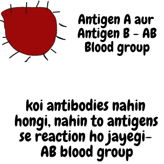 AB blood group antigen aur antibodies