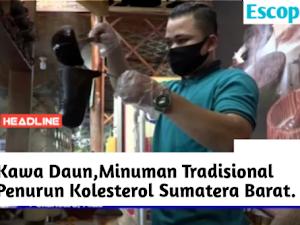 Kawa daun,Minuman Tradisional Penurun Kolesterol Khas Sumatera Barat
