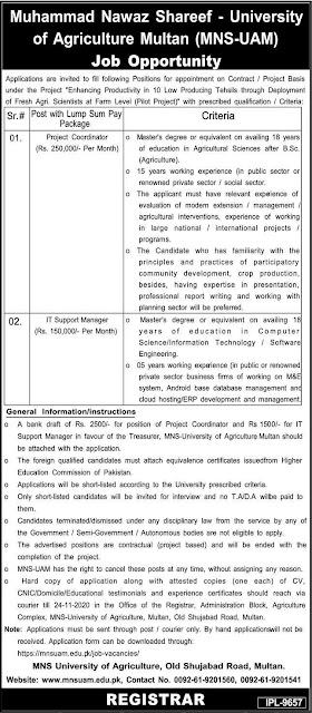 Muhammad Nawaz Sharif University of Agriculture Jobs 2020