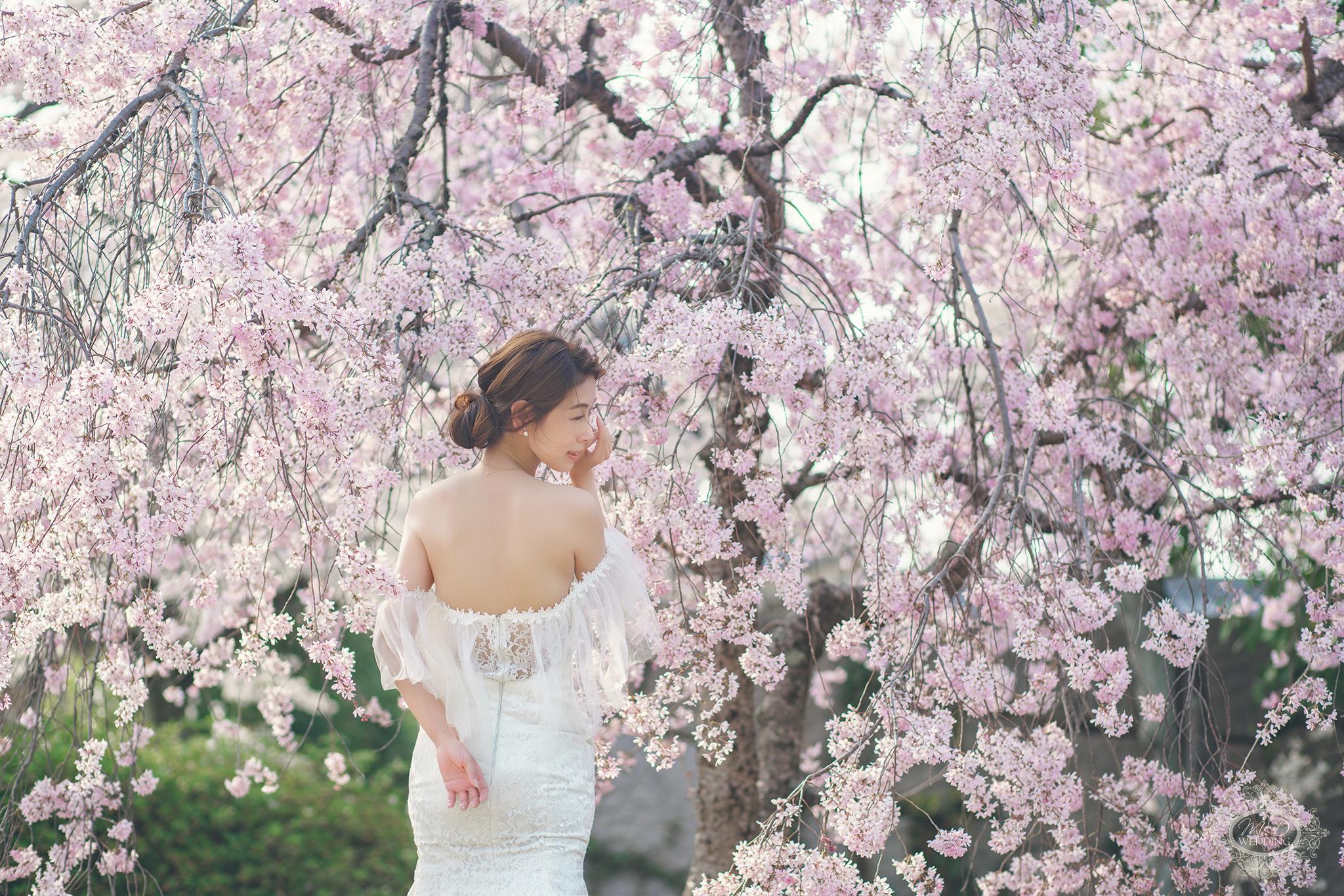 日本京都櫻花婚紗 奈良 清水寺 八坂神社 二年坂 和服婚紗 京都租和服