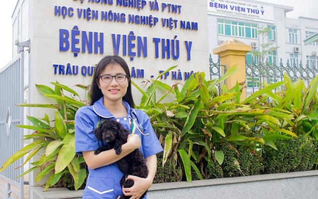 Bệnh viện thú y Hà Nội – nơi hỗ trợ cách ly an toàn cho thú cưng phòng chống Covid-19