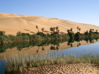 Gambar Gurun Pasir di Libya Gurun Pasir ada Tumbuhan dan