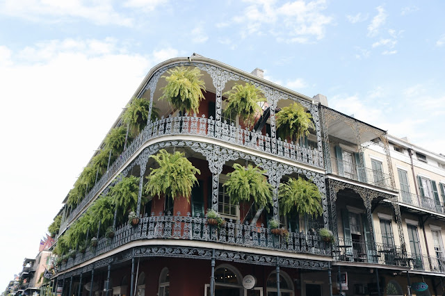 Jasmine Tosh Lately : A Weekend In New Orleans