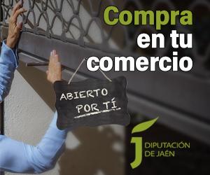 DIPUTACIÓN DE JAÉN - COMERCIO