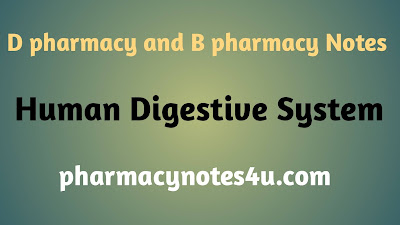 Human digestive system , d pharmcy and b pharmacy notes