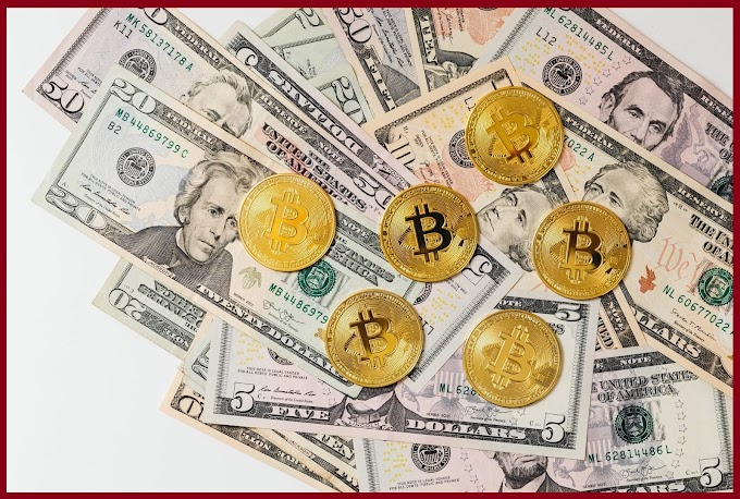 Simple steps to start earning interest on Crypto worldfree4u.site
