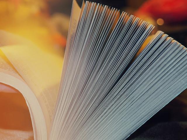 Laudas e páginas: como calcular?