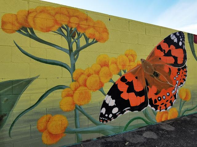 Albury Street Art by Kristina Greenwood