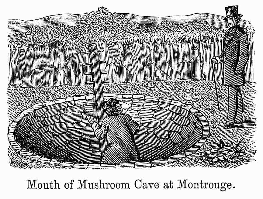 "an 1869 illustration, ""Mouth of Mushroom Cave at Montrouge"""