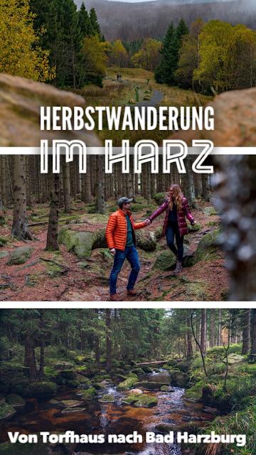 Herbstwanderung im Harz  Torfhaus – Eckerstausee – Bad Harzburg 20