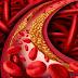 Medicul îți ascunde asta! Informații esențiale despre colesterol și ce trebuie să mănânci ca să îl scazi