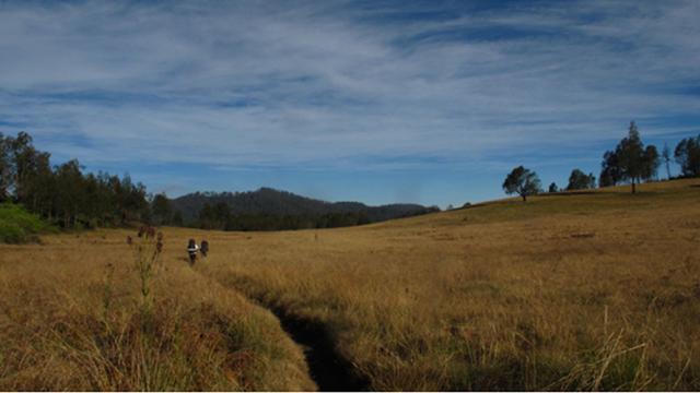 Wisata Gunung Argopuro