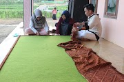 Mading Desa Bandung