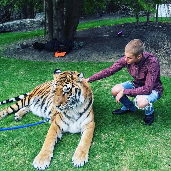 Justin Bieber e um tigre acorrentado na festa de casamento do pai