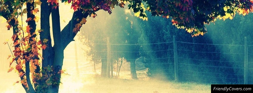 50 beautiful natural Facebook cover page photos | HOW ALL DO