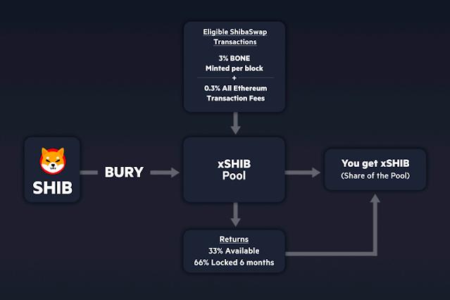 How to stake or bury shiba inu tokens on Shibaswap