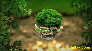 Material Ecology PDF PPT DOC [Complete]