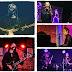 Koncertowy październik: Runforrest, Clock Machine, Moriah Woods, Sóley, Ziela!