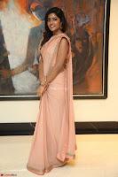 Eesha Rebba in beautiful peach saree at Darshakudu pre release ~  Exclusive Celebrities Galleries 050.JPG