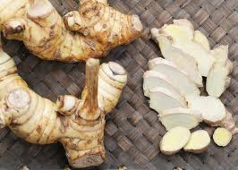 The Amazing Of Health Benefits of Galangal for Health and Beauty - healthy T1ps