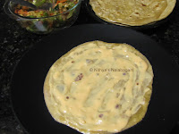 Vegetable Chapati roll 15