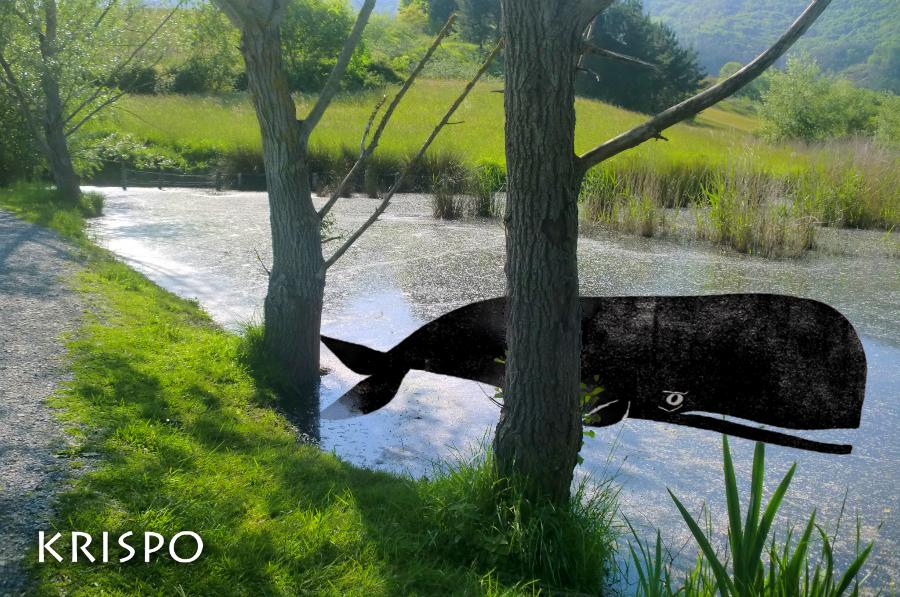 fotomontaje de un cachalote en lago de hondarribia